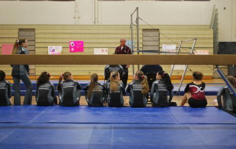 Gymnastics conquers Newton South