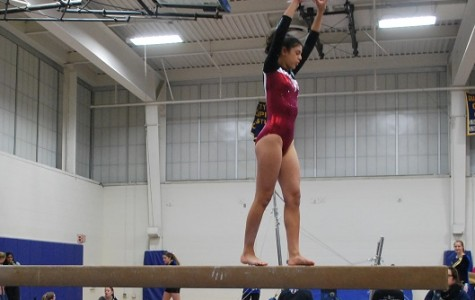 Gymnastics comes out on top