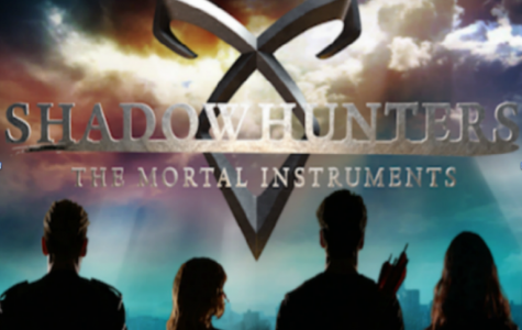"""Shadowhunter"" fans disappointed everywhere"