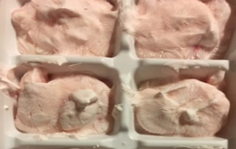 Yummy Strawberry Ice Cream For Dogs and People
