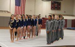 Photos: Gymnastics 1/17
