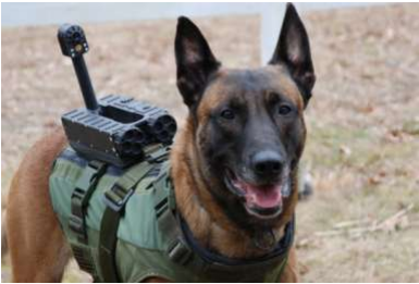 The mounted camera on a K-9 unit is the subject of this fundraiser.