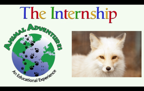 Video: An exotic internship