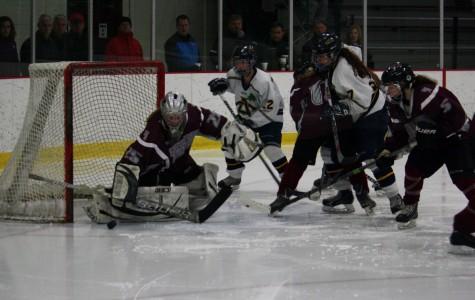 Girls' hockey defeated
