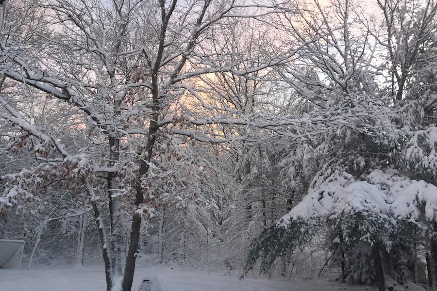 Westford+was+blanketed+with+snow+Friday+morning.