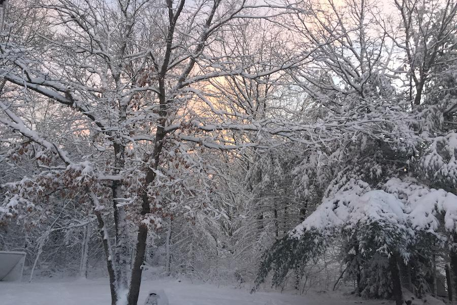 Westford was blanketed with snow Friday morning.