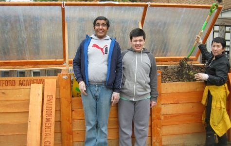 Greenhouse to spruce up Westford Academy