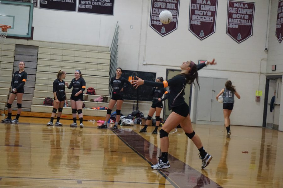Elise Sepe about to put the ball in play.