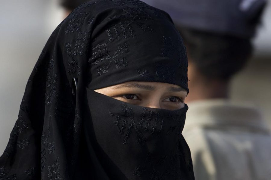 Woman+in+a+niqab%0A%28https%3A%2F%2Fupload.wikimedia.org%2Fwikipedia%2Fcommons%2F7%2F7a%2FIndia_%282533145450%29.jpg%29
