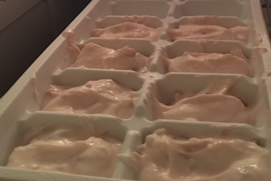 Put+the+tray+into+the+freezer.