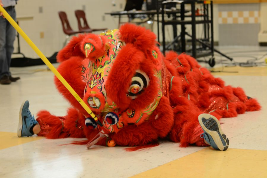 The+lion+stops+to+eat+Antonelli%27s+offering+during+the+Lion+Dance.