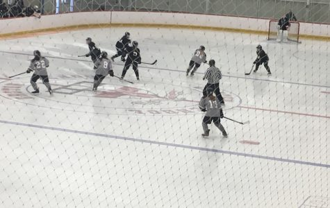 WA Girls' Hockey moves on in playoffs
