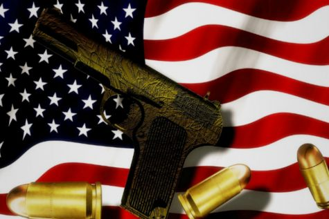 Gun Control: Firearms require regulation on a federal level