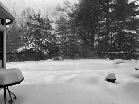 Snow Day Grader: January 4th