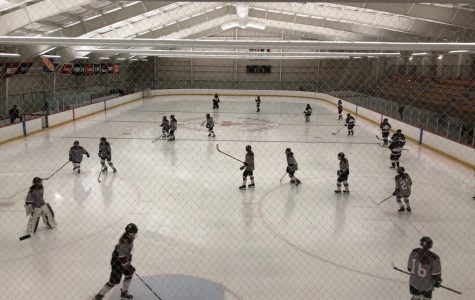 WA Girls' Hockey crushes Cambridge