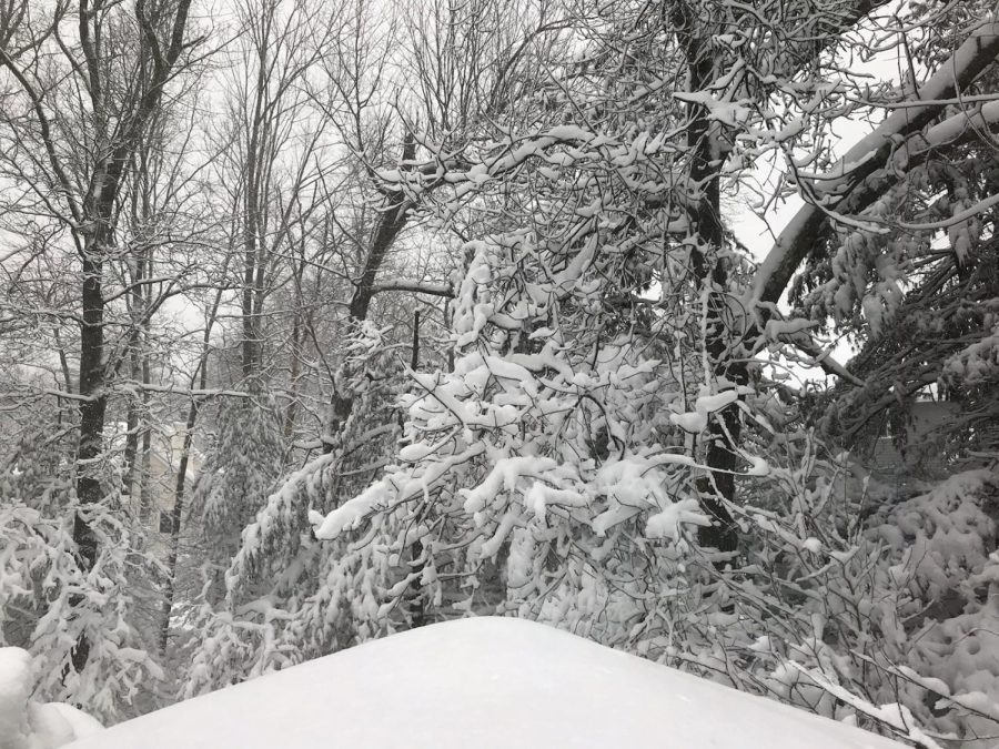 Snow day: March 13th and 14th