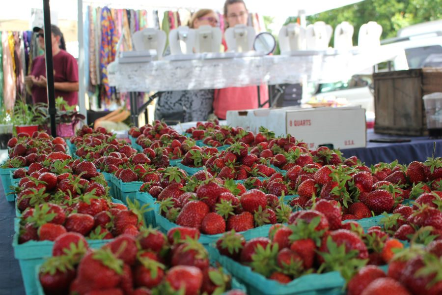 Springdell Farms sells their fresh, handpicked strawberries.