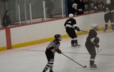 Success on Senior Night for Girls' Hockey
