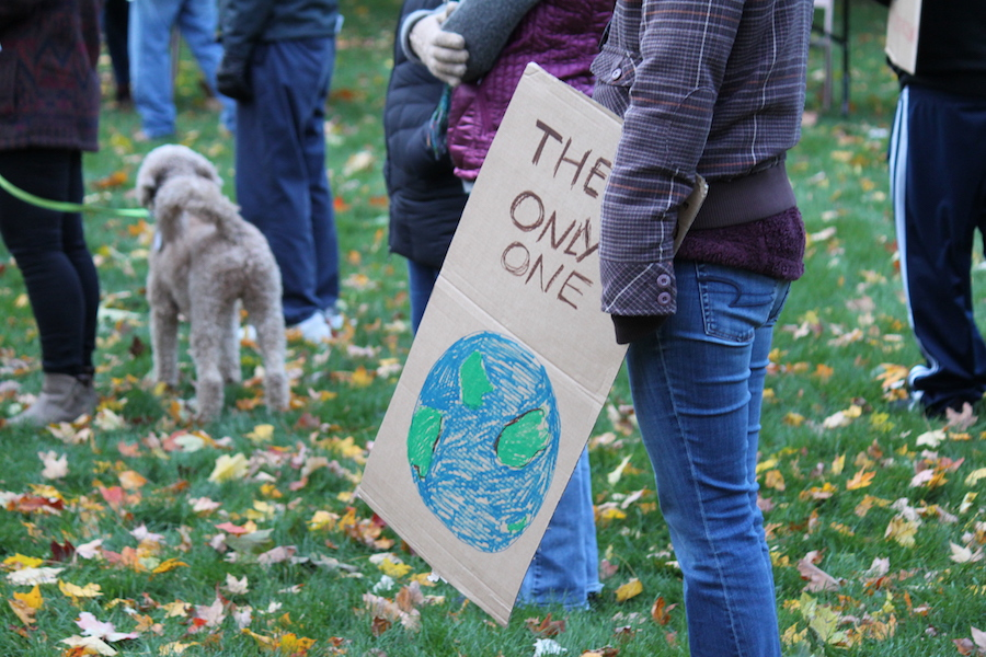 A supporter brings a sign in support of the planet.