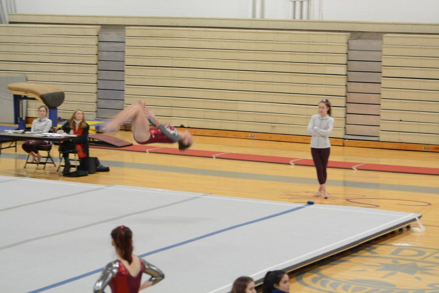 The WA gymnastics team is showing off their impressive skills.