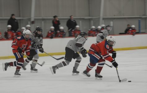 Tewksbury-Methuen edges out WA Girls' Varsity Hockey