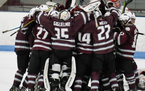 WA Boys' Hockey team celebrates their win against Waltham.