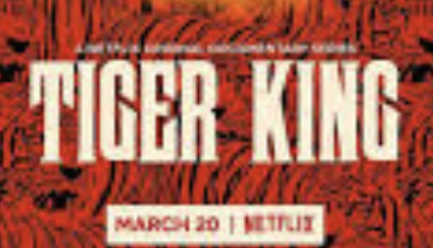 Netflix's Tiger King is a great way to spend time during social distancing