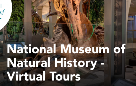This is the website for the Virtual Tour, scrolling down will lead you links to guide you to different areas of the museum.