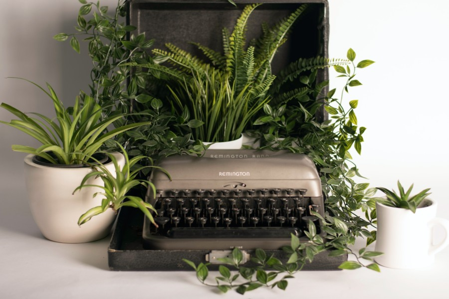 Green houseplants sit around a typewriter.