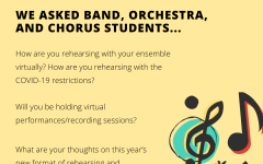 Soundbytes: music students' opinions on rehearsing with COVID-19 restrictions