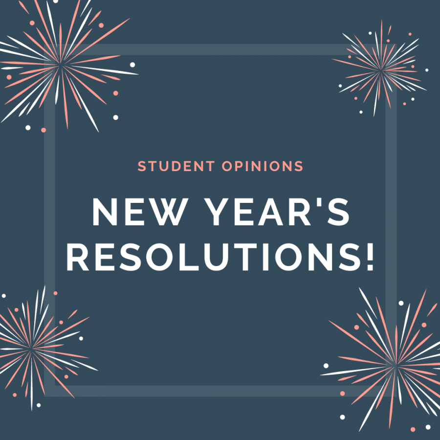 Soundbytes: students make new year's resolutions