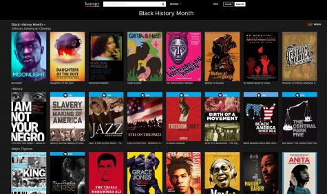 Various black history movies.
