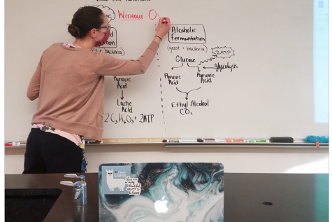 Science teacher Alexandra Wilson teaches a biology class with students streaming in from home facing the whiteboard.