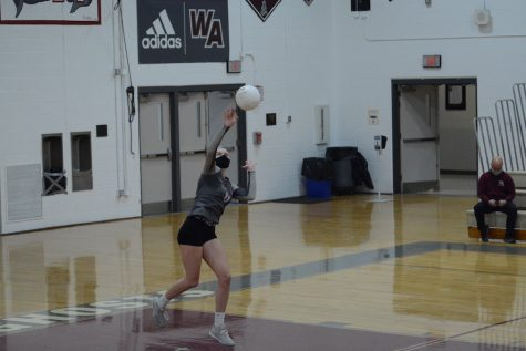Tierney performs a jump serve over the net.