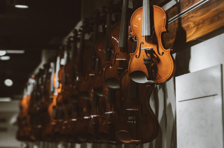 String instruments hanging upon a rack.
