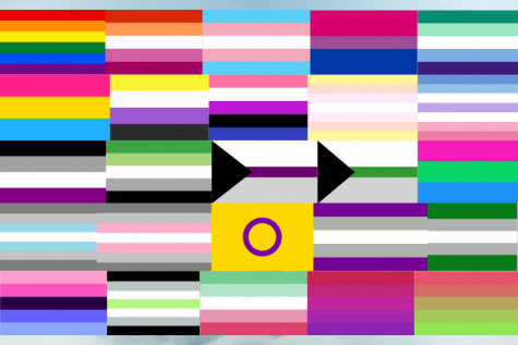 A picture of many pride flags. From left to right, row by row: rainbow, lesbian, transgender, bisexual, gay, pansexual, nonbinary, genderfluid, pangender, bigender, asexual, aromantic, demisexual, demiromantic, polysexual, demiboy, demigirl, intersex, greysexual, greyromantic, omnisexual, agender, abrosexual, aceflux, and aroflux.