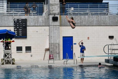 Durgin in the middle of a dive.