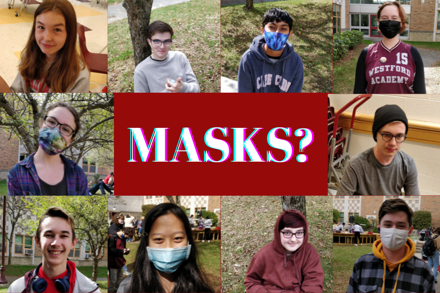 What are your opinions about masks and the mask mandate?